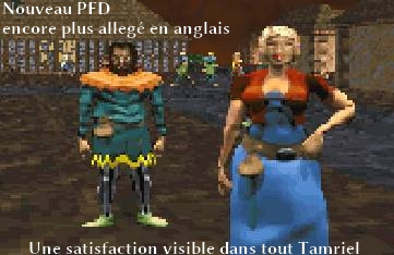 Projet French Daggerfall Version 0.25 : Daggerfall All�g� 3% En Anglais
