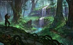 Cascade isolée dans le Bois de Graht