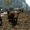 La vache de Fort-Ivar