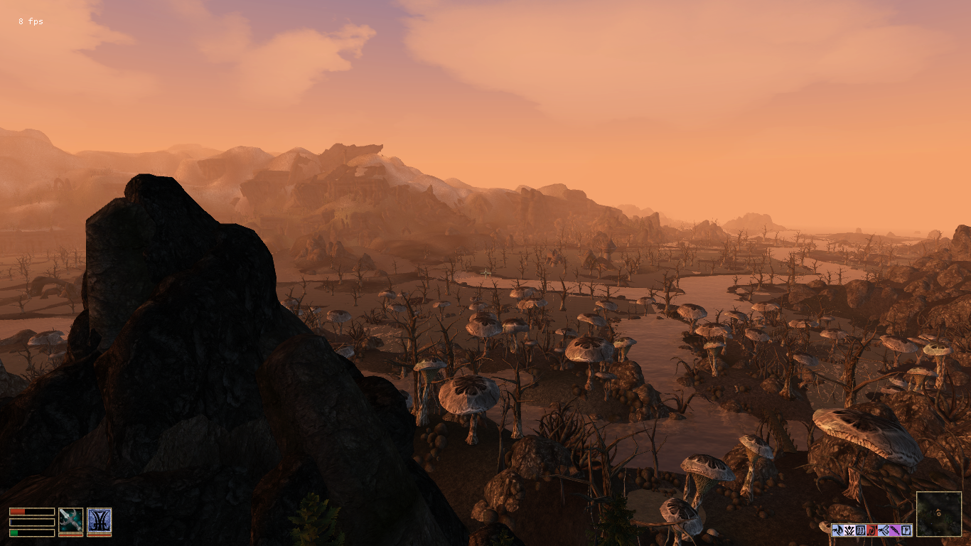 Panorama des marais