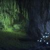 Une petite grotte