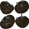 Aetherolite