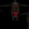 Chaman ogre02
